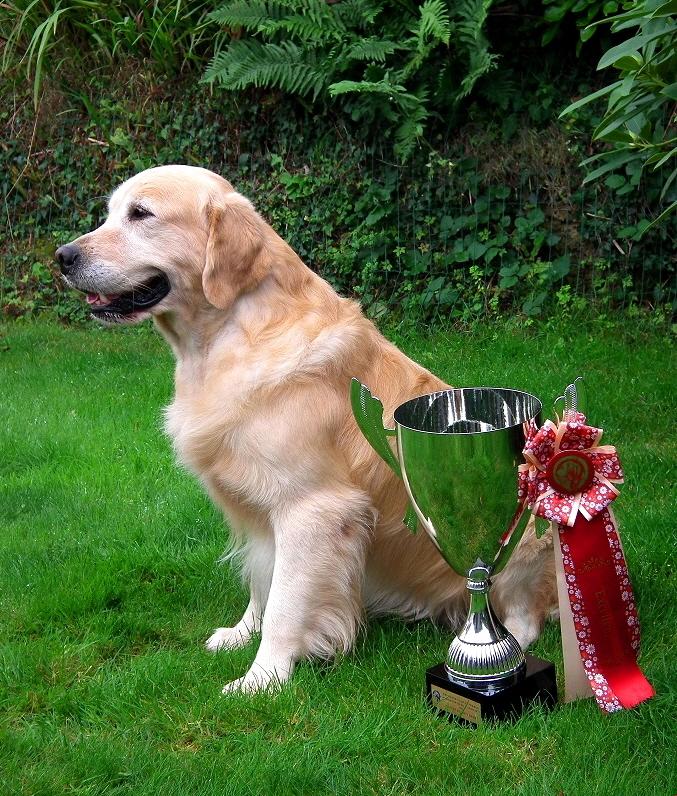Ifig 4 ans / homologation du titre champion beau et bon 2016